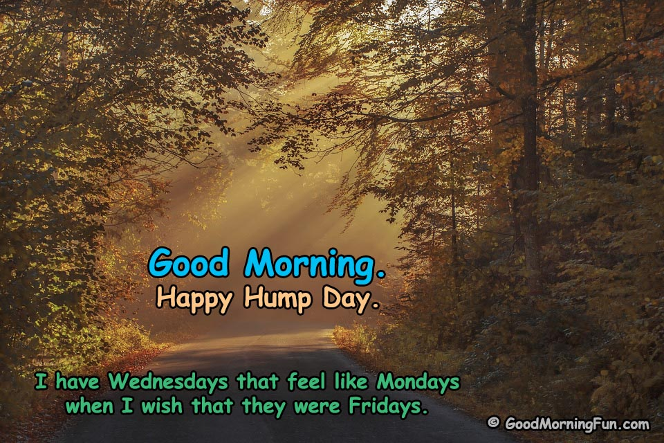 Good Morning Wednesday - Happy Hump Day Funny Quotes