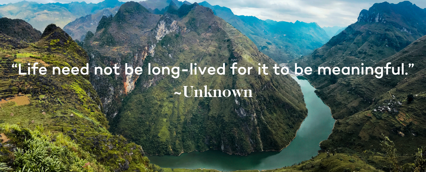 Miscarriage Quote - Life need not be long-lived for it to be meaningful